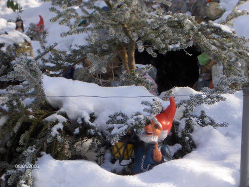 Überwintern am Märchenweiher